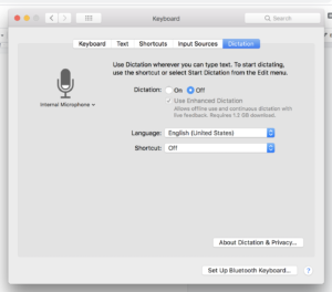 Apple Dictation options (Under Keyboard)